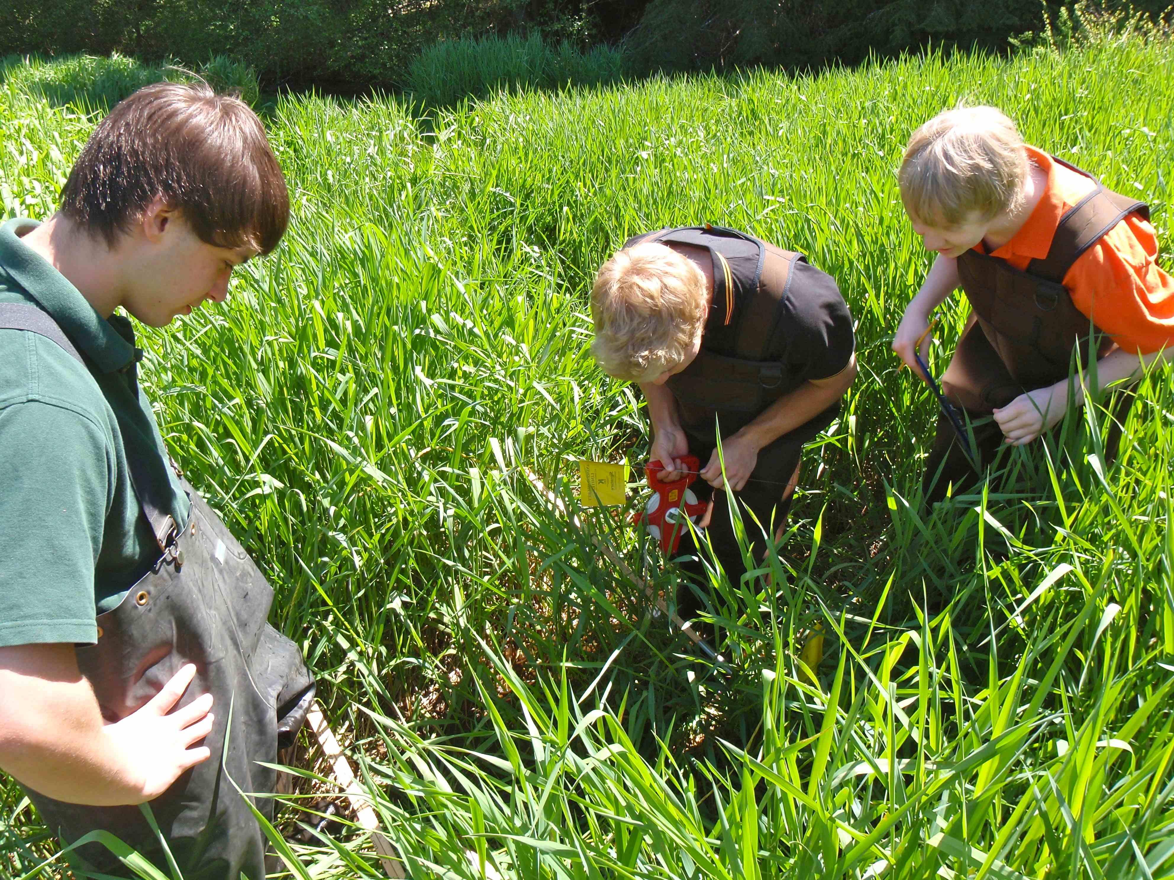 Wetland monitoring at Shawnigan Lake