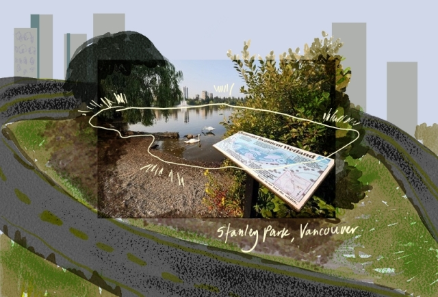 Stanley Park's Storm Water Wetland, by Eryne Donahue