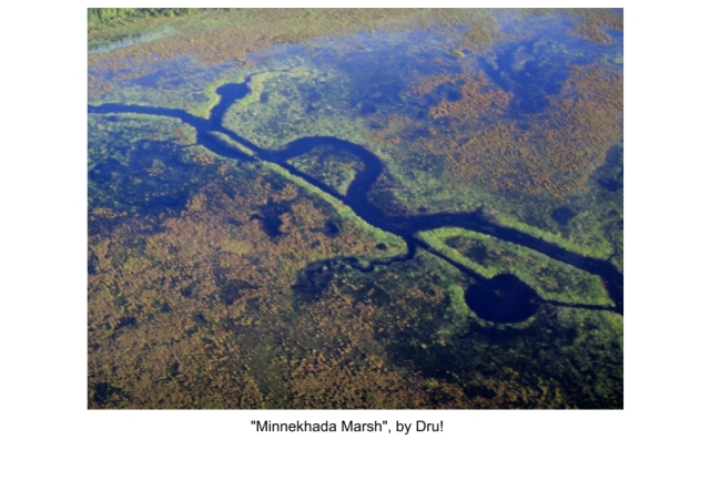 photo of the week Minnekhada marsh