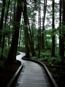 The new touches on the paths look great! Image by Rachel Schott.