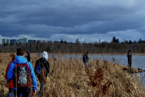 Workshop participants map the contour of a marsh along Burnaby Lake Marsh (Photo: Rachel Schott)