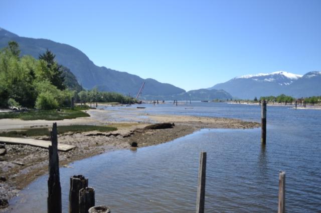 What beautiful day at a beautiful estuary! Photo by Rachel Schott.