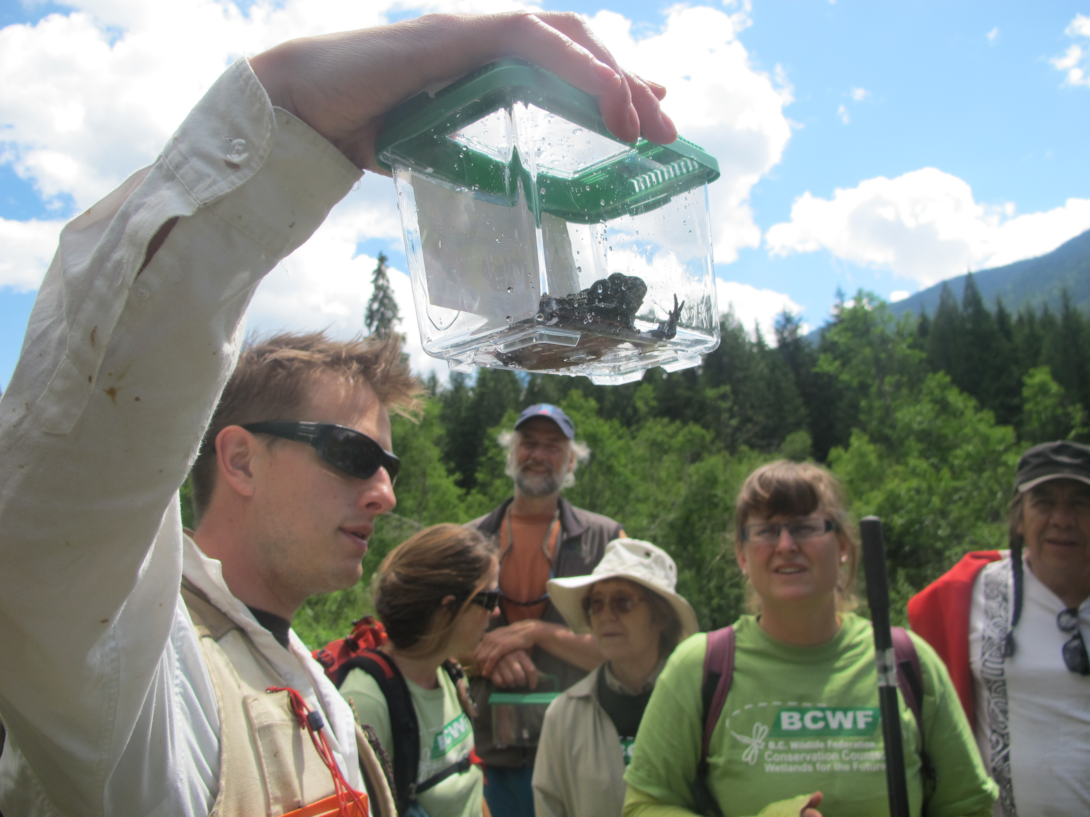Jakob Dulisse holds up an adult Western Toad.  Photo by Jason Jobin.