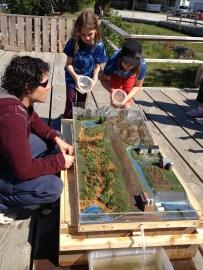Wetlands model