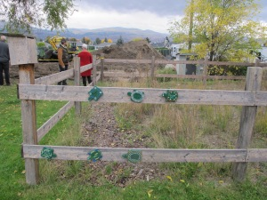 This project was started because students at KLO middle school in Kelowna found baby painted turtles in their long jump sand box. This area has now been fenced off and students displayed some interpretative signs.