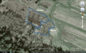 Dan's GPS track of the two wetlands we surveyed at UBC Farm