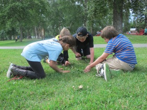 Searching for the ultimate scavenger hunt item - the four-leaf clover
