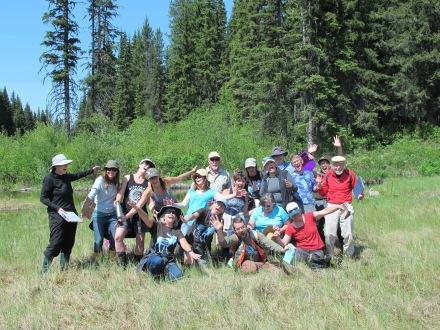 Participants falling into the fen