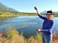 Dr. Suzanne Bayley explains wetland hydrology